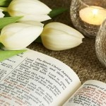 Bible opened on story about resurrection of Jesus and bunch of tulips.